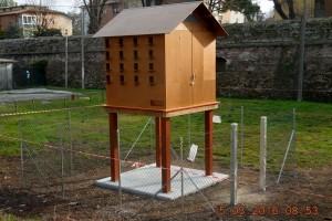 """Padova: antifecondativi e """"case"""" per i piccioni"""